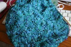 Shawl070709 240x160 Pick and Choose
