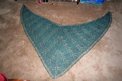 StacyShawl100409