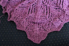 WIP040511 240x160 Antimacassar Shawl