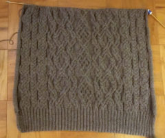 WIP021217 240x202 We Interrupt This Knitting Blog