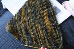 Aestlight010310 240x160 The First FO of 2010