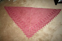Swallowtail010110 240x160 The First FO of 2010